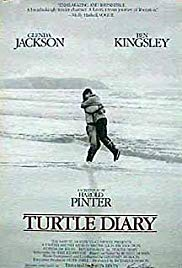 海龟日记,Turtle Diary