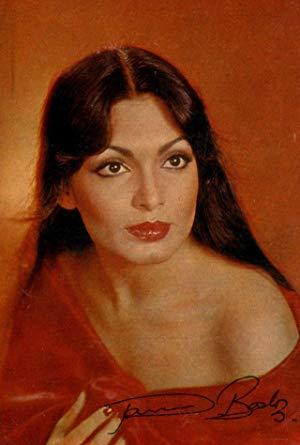 帕尔文·巴比 ( Parveen Babi)